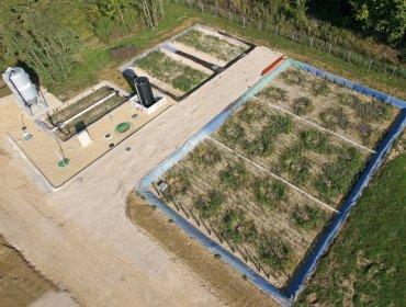 Roseaulix, l'épuration écologique - Photo n°2